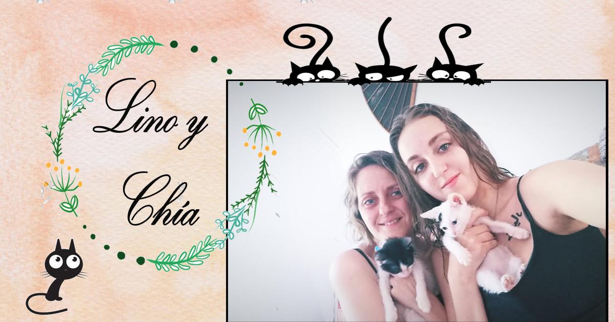 ¡Lino y Chía adoptados!