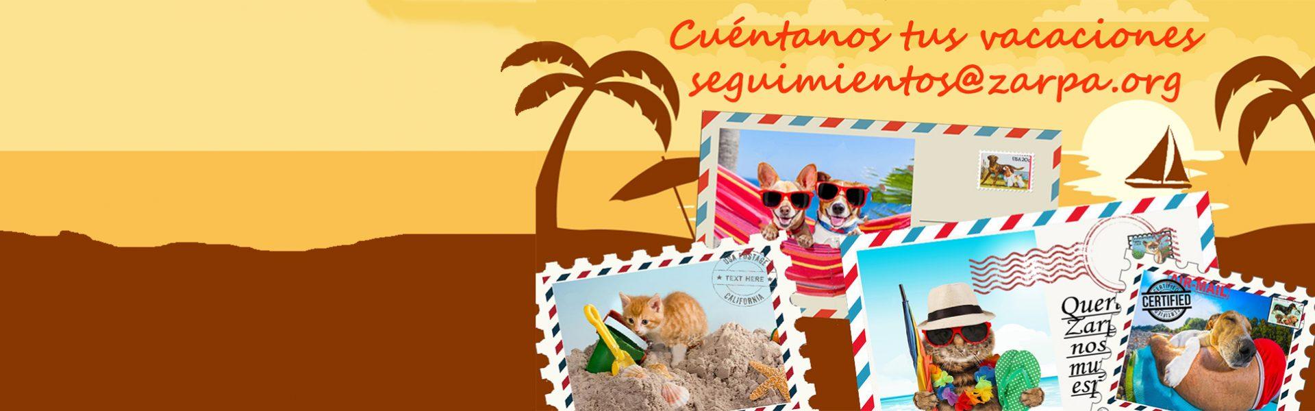 ¡Cuéntanos tus vacaciones!