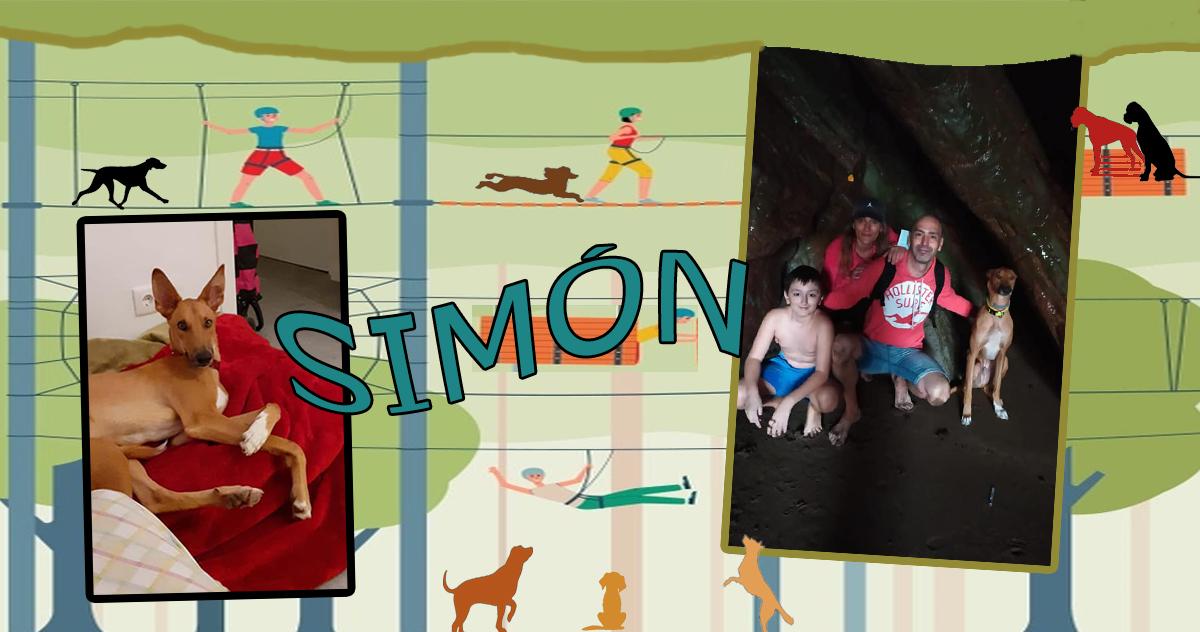 ¡Simón adoptado!