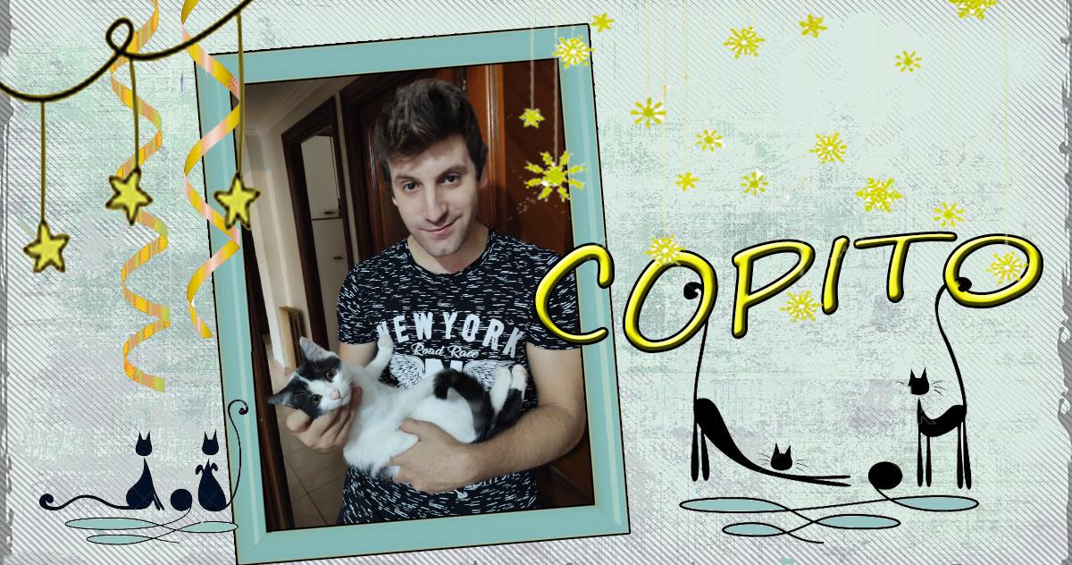 Copito gato adoptado Zarpa