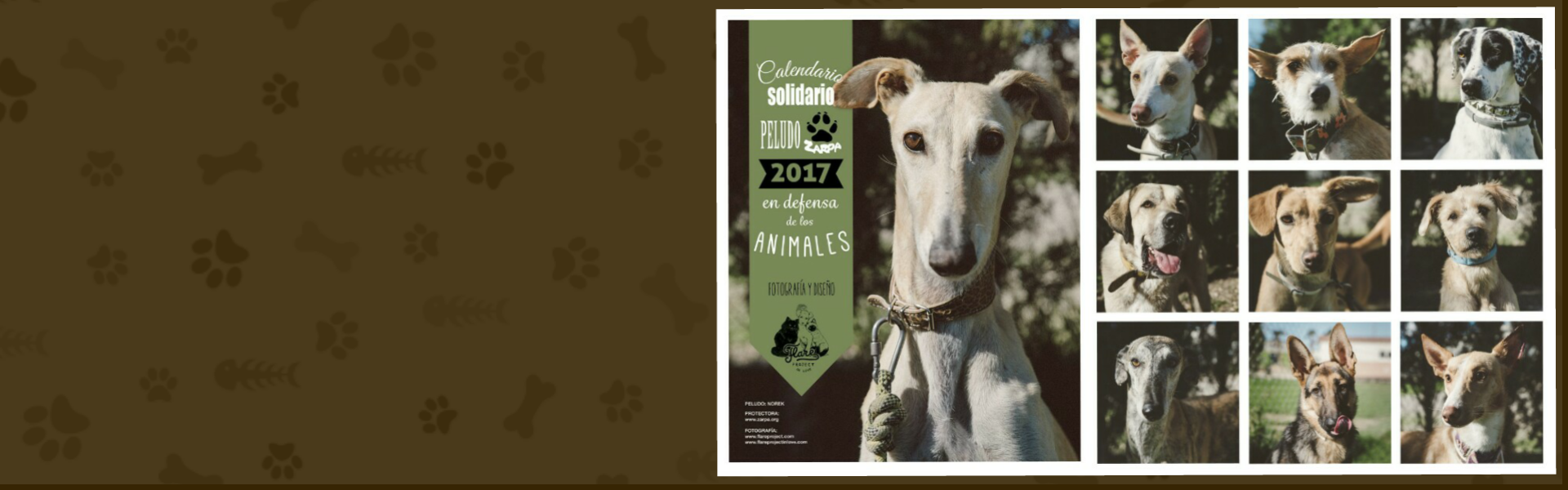Calendario Perros Zarposos 2017