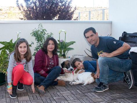 ¡Mowgly adoptado!