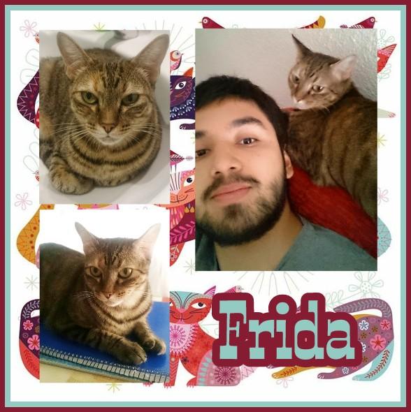 ¡Frida adoptada!