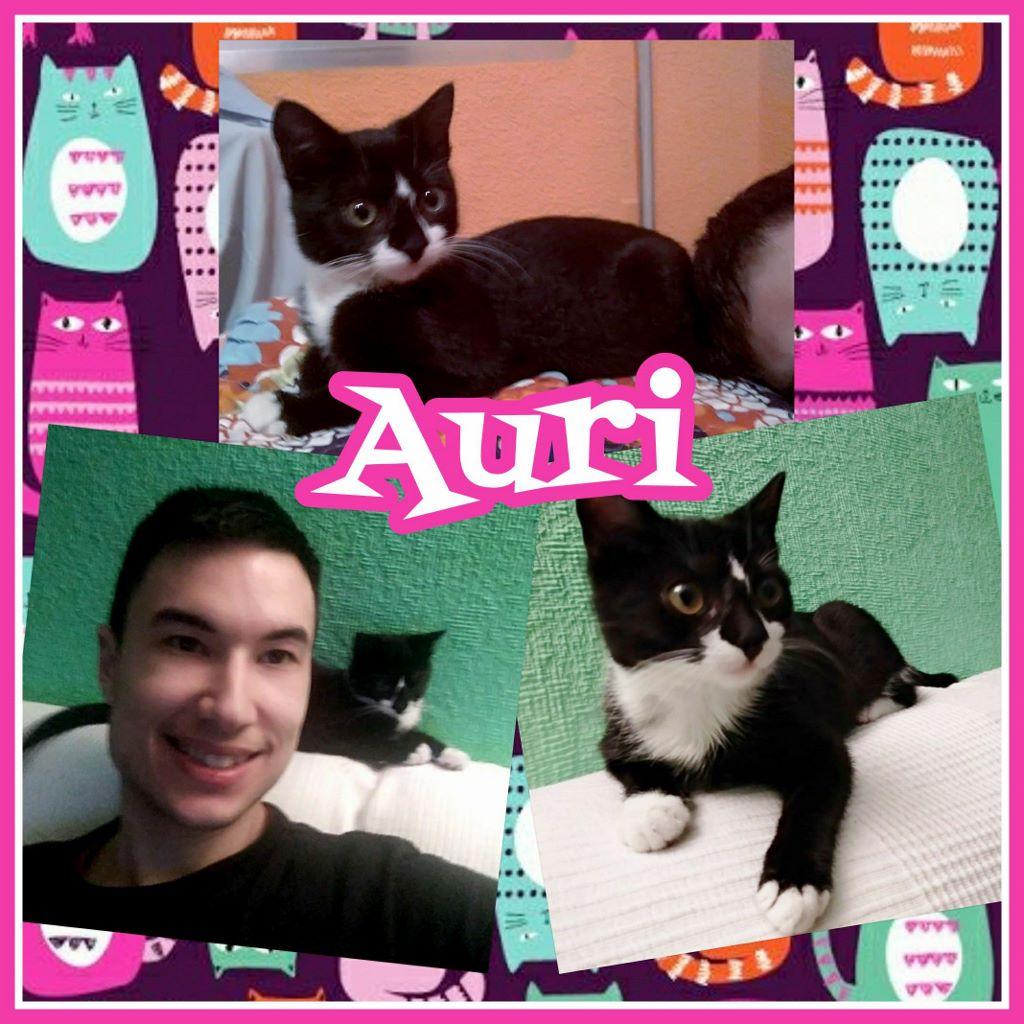¡Auri, antes Cuca, adoptada!