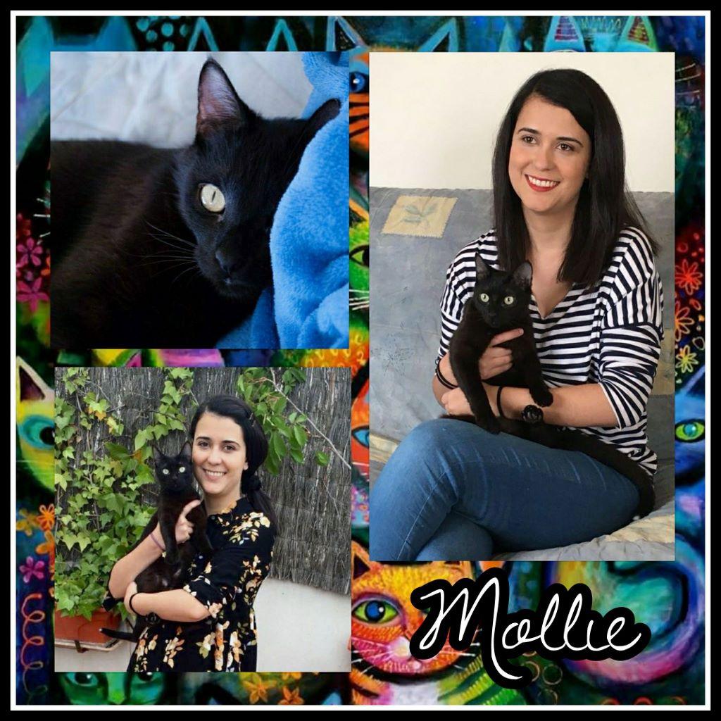 ¡Mollie adoptada!