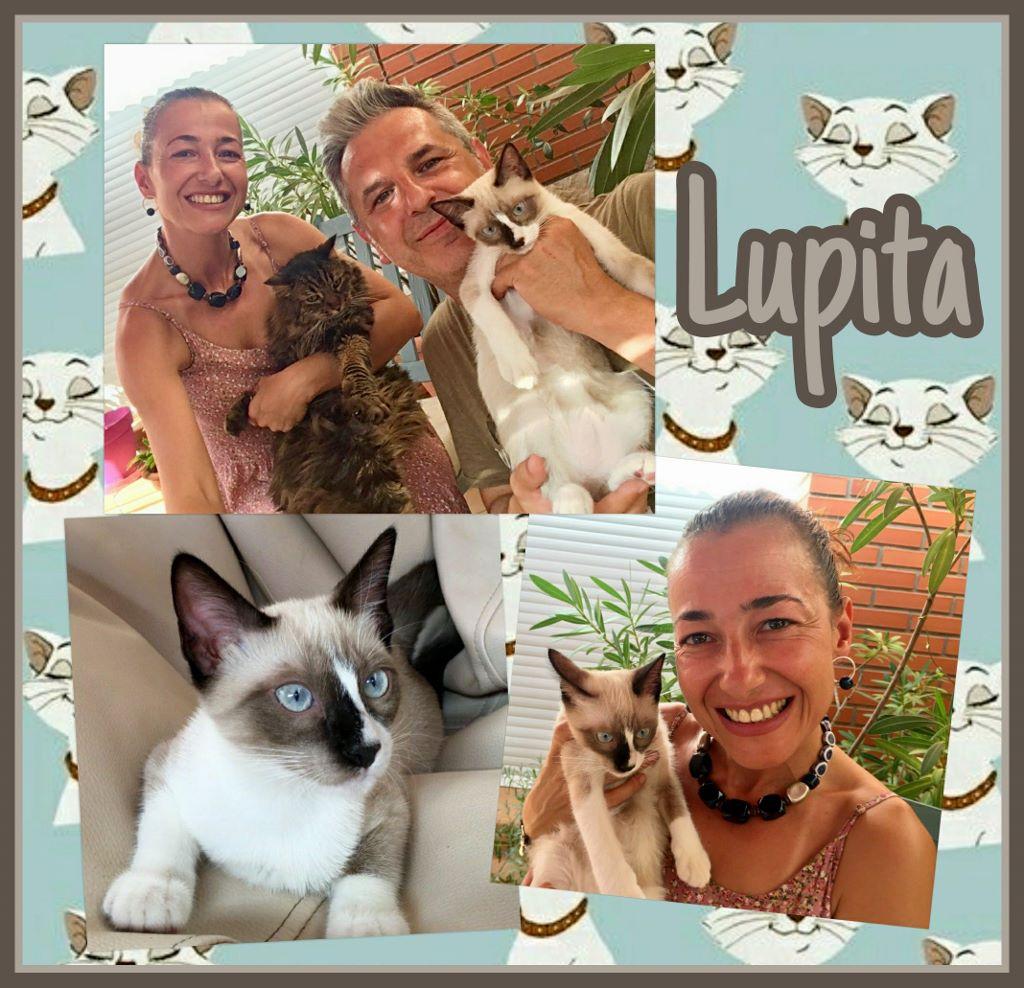 ¡Lupita adoptada!