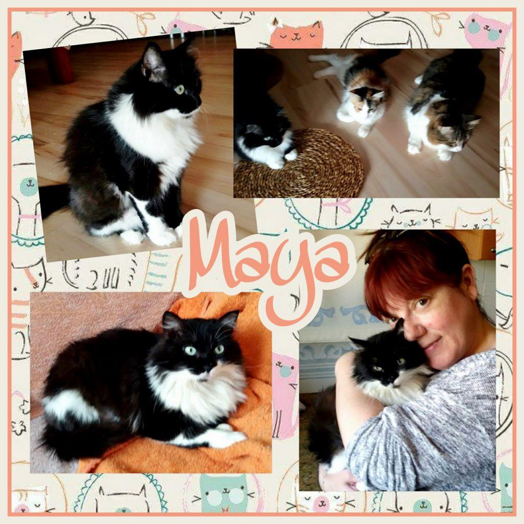 ¡Maya, antes Winona, adoptada!