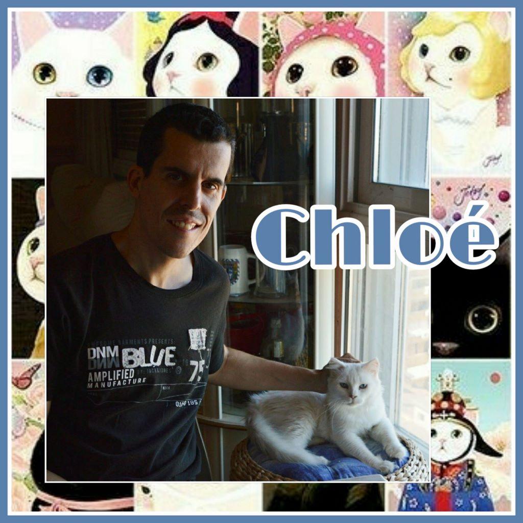 ¡Chloé, antes Maui, adoptada!