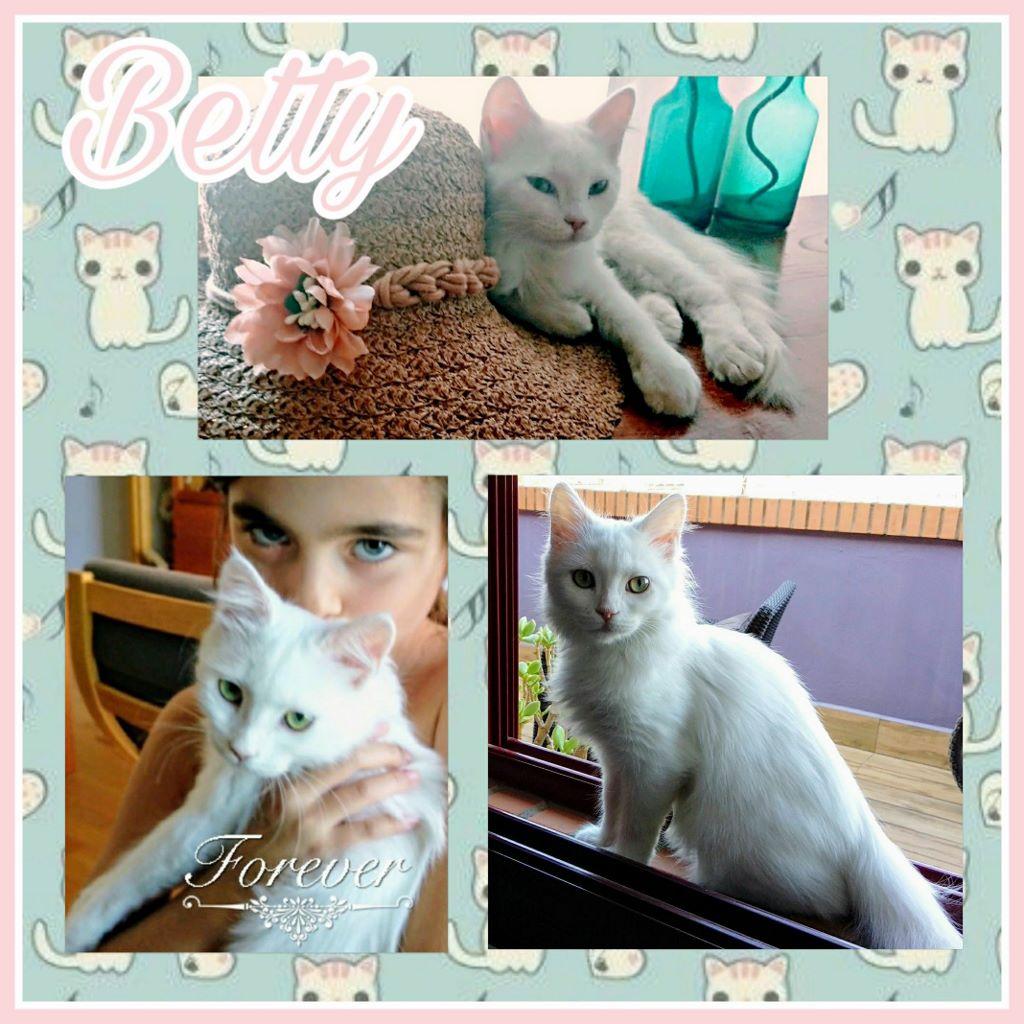 ¡Betty, antes Jaina Valiente, adoptada!