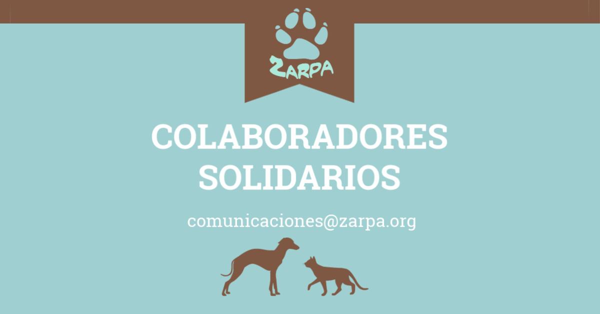 Colaboradores solidarios