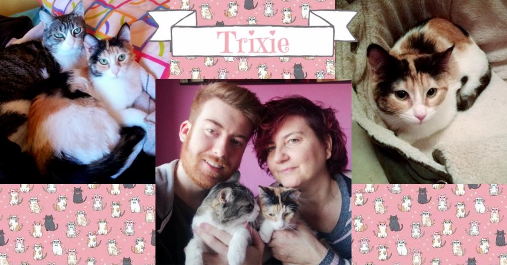 ¡Trixie adoptada!