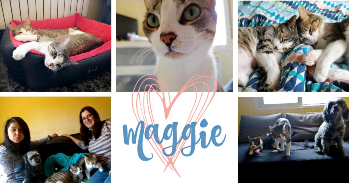 ¡Maggie adoptada!