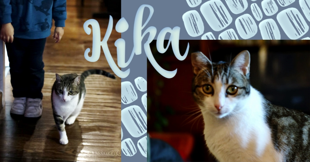 ¡Kika, antes Mara, adoptada!
