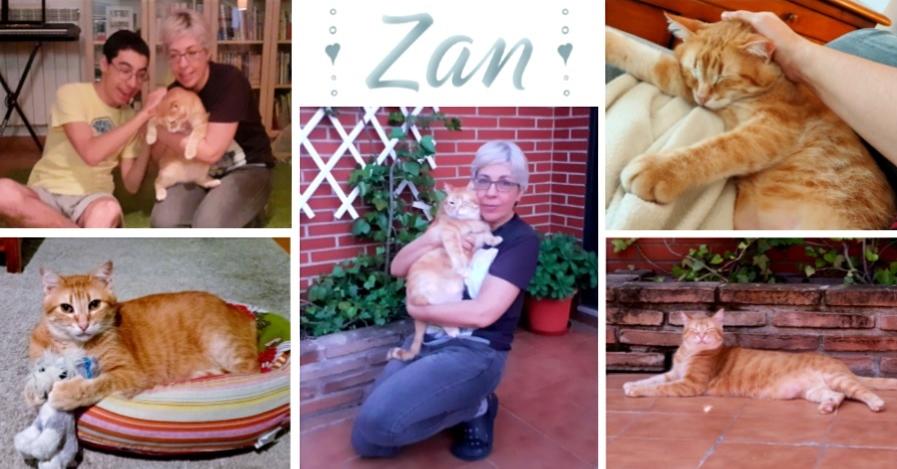 ¡Zan, antes Mitch, adoptado!
