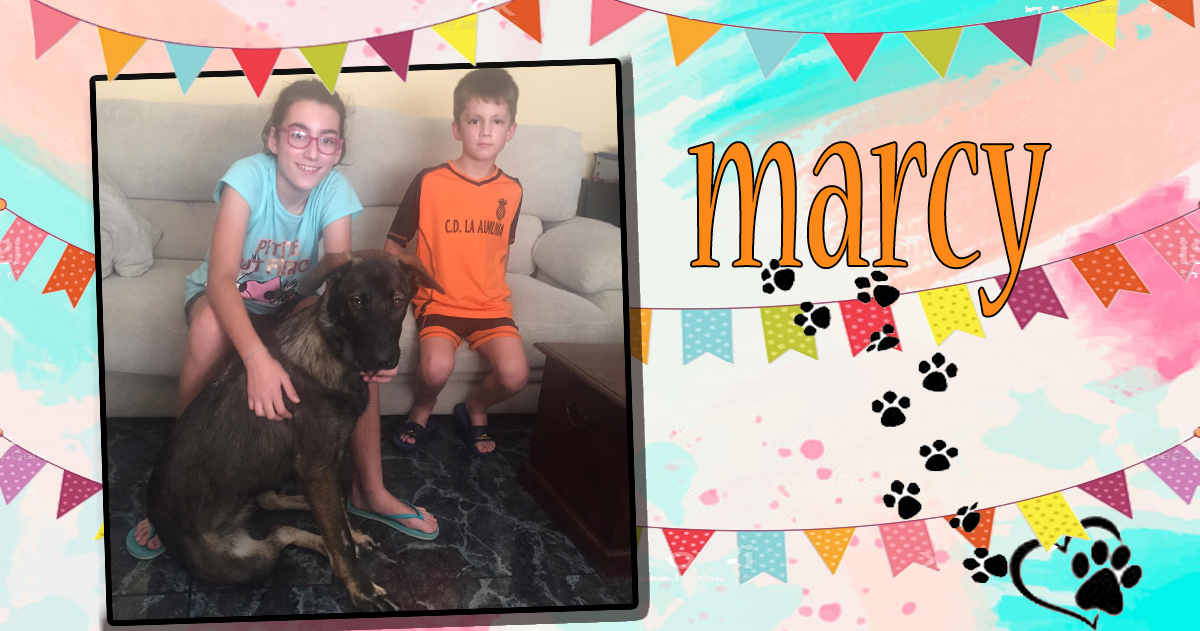 ¡Marcy, antes Marceline, adoptada!