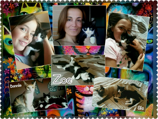 ¡Zoe adoptada!
