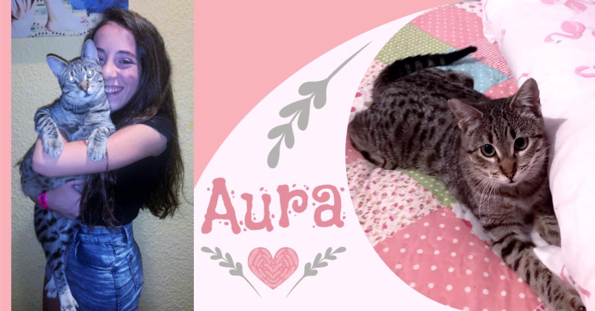¡Aura, antes Kitty, adoptada!