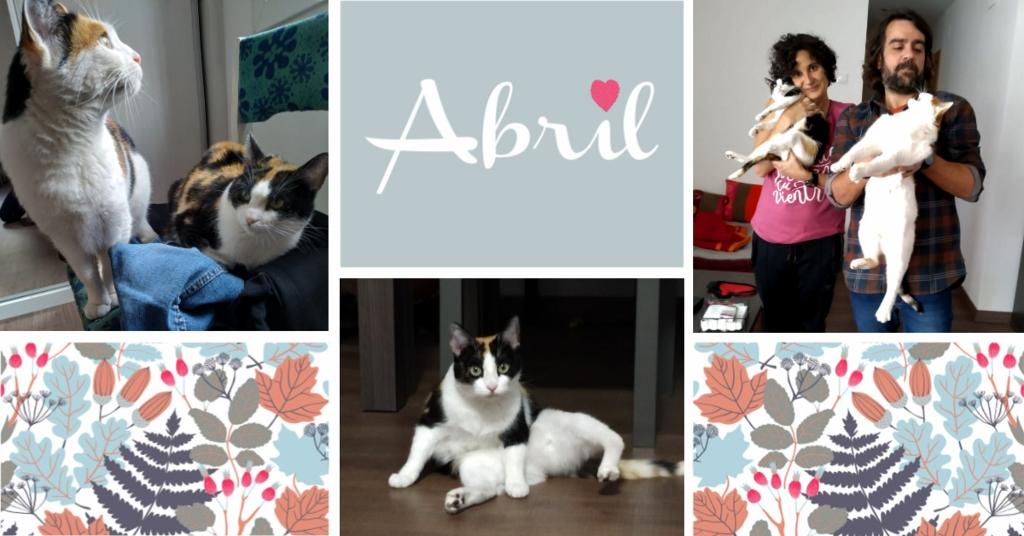 ¡Abril adoptada!