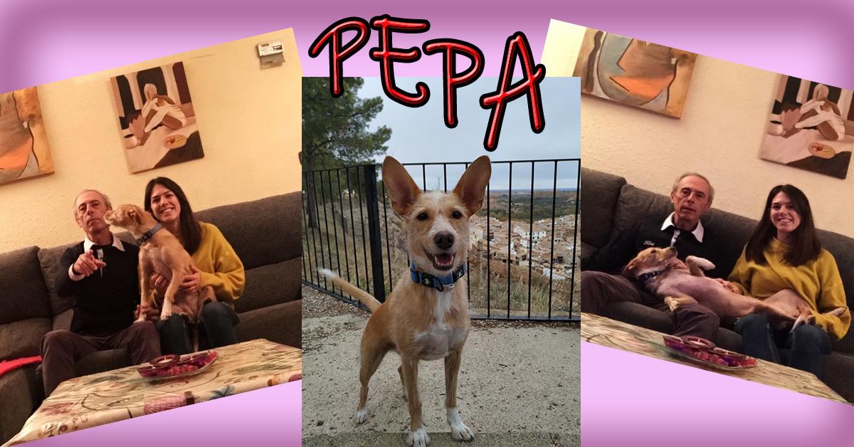 ¡Pepa adoptada!